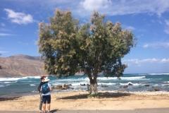 Crete3
