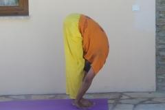 10.Head-to-knee-pose-Padahastasana