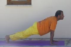 5.Plank-pose